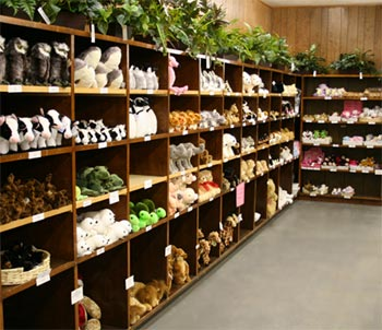 Alders - Stuffed Animals Room
